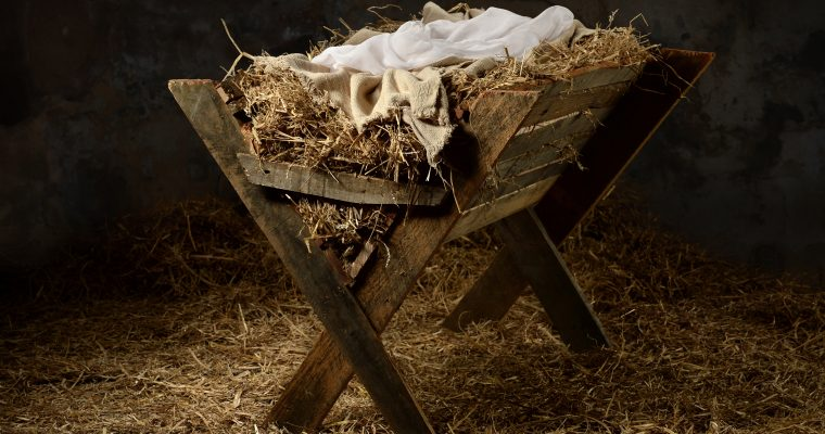 What Do You See when You Look in the Manger?