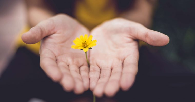 Forgive as You Are Forgiven: A Story of Mercy