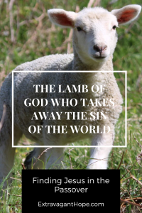 Pinterest Graphic Lamb