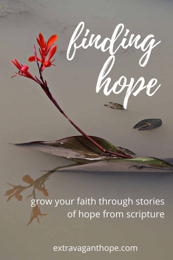 hope found in the bible